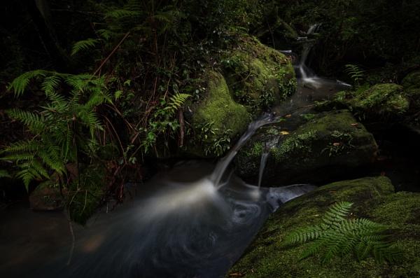 The Hidden Falls by tvhoward950