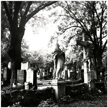 Central Cemetery Vienna