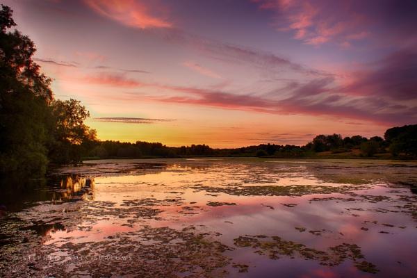 Longmoor Sunset by Stephen_B
