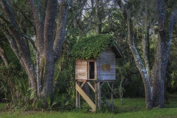 Abandoned playhouse by jbsaladino