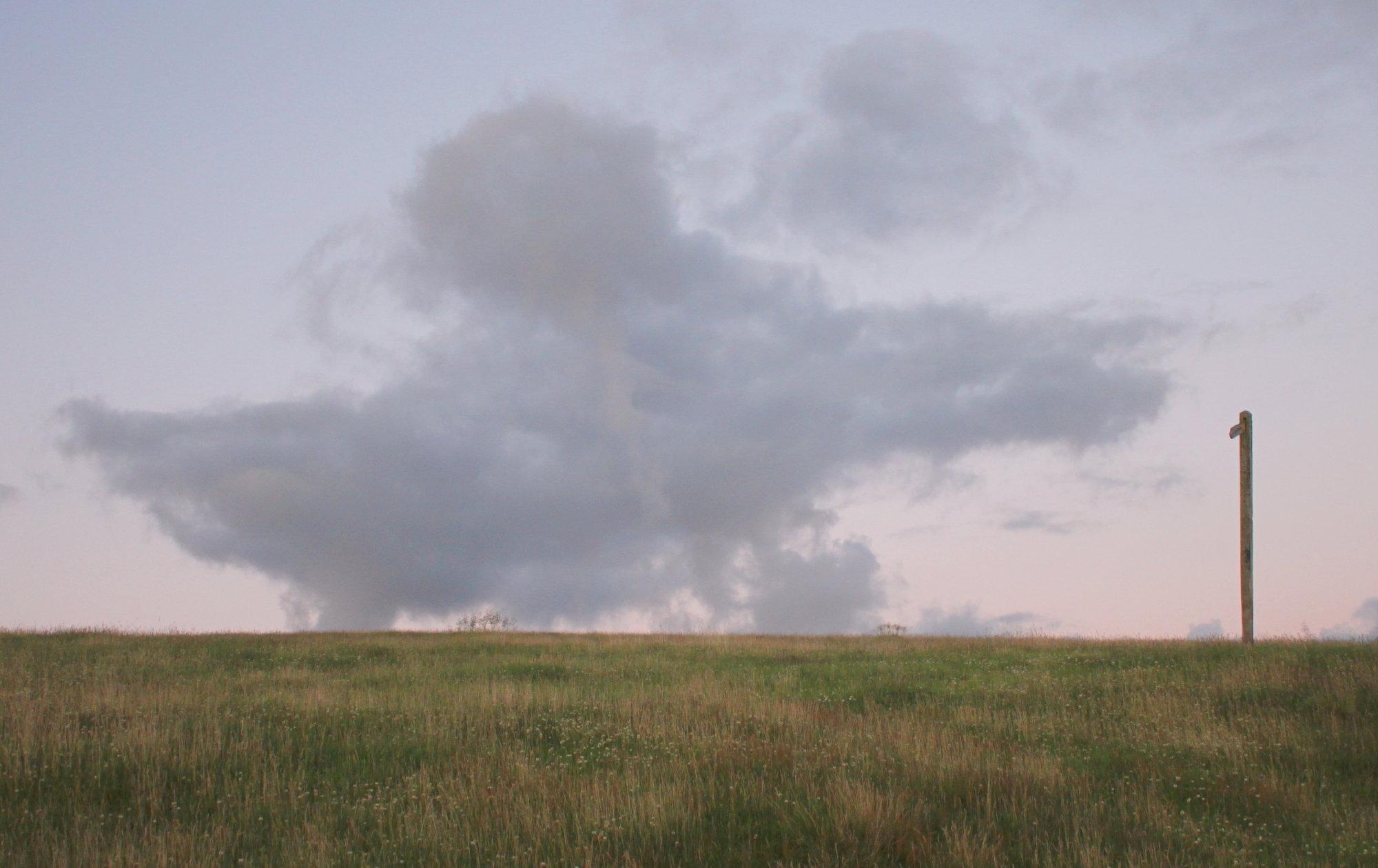 Dusk at Lark Hill