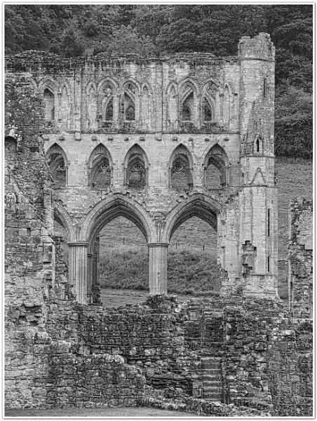 Rievaulx Arches by DaveRyder