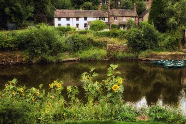 Shropshire Scene by Alfie_P