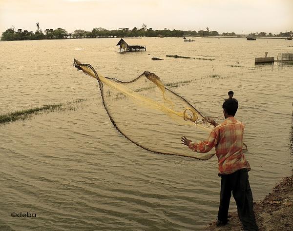 From_Kolkata # 76 Fishing by Cast net 2 by debu