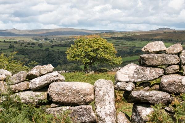 Dartmoor by number9