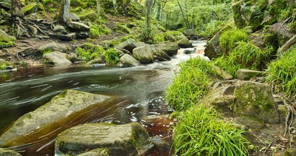 Burbage Brook, Padley Gorge, Derbyshire. by Alex64