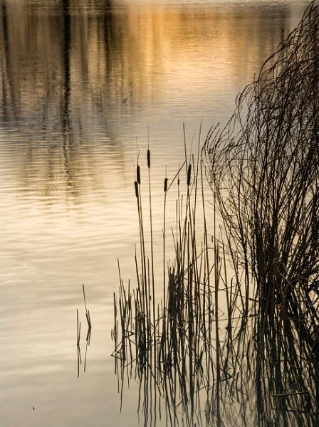 Peaceful by paulmerhaba