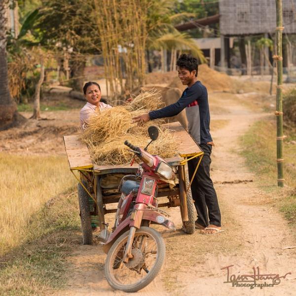 Happy in the Hay by IainHamer