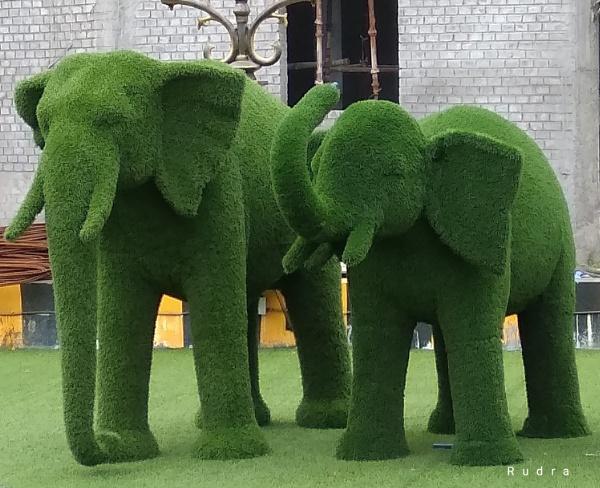 Green elephant by Rudranath