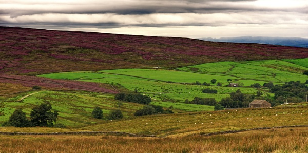 Forrest of Bowland by Grumby