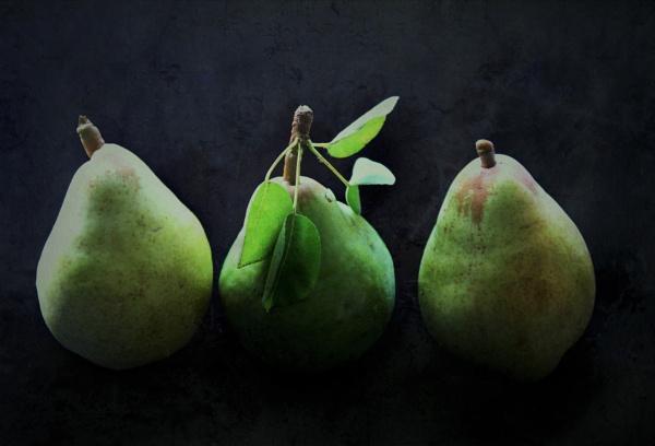 Harvested pears by helenlinda