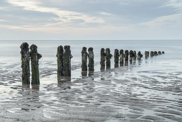 Sandsend Groynes by pdove
