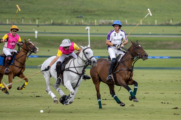 MIDHURST, WEST SUSSEX/UK - SEPTEMBER 1 : Playing polo in Midhurs by Phil_Bird
