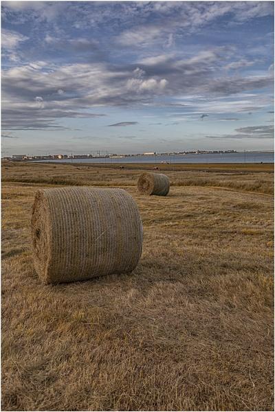 Seaton Hay by stevenb
