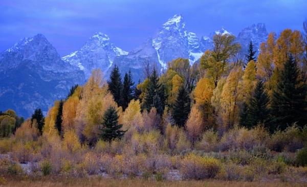 The feel of autumn by mlseawell