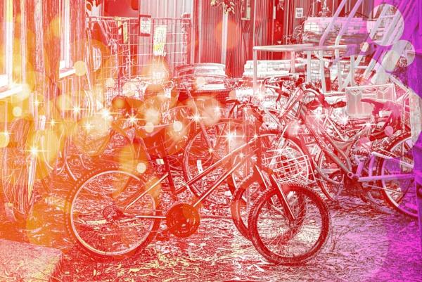 Bike Rack by Peco