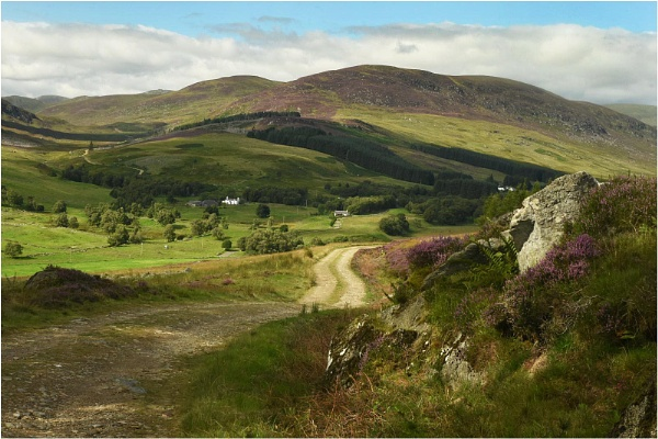 Hill Track, Upper Glenisla by MalcolmM