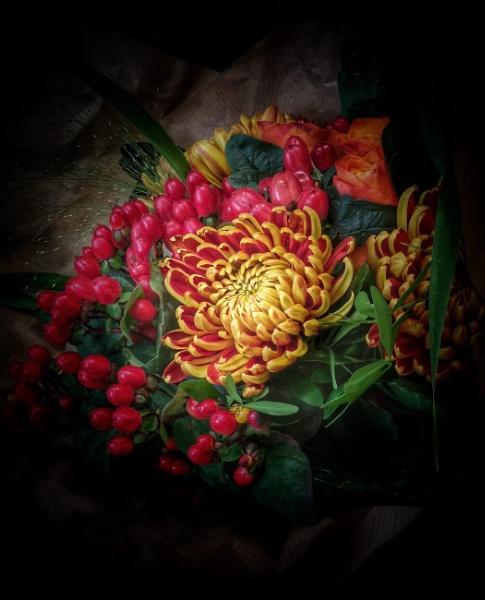 Autumnal colours by StevenBest