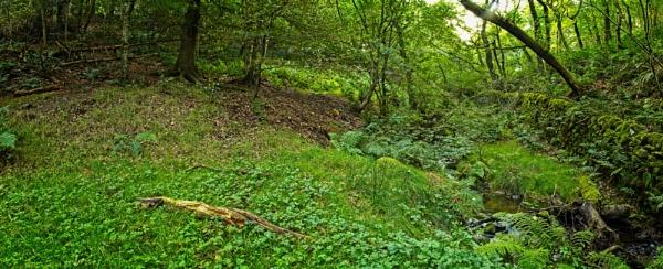 Nether Padley, Peak District. by Alex64