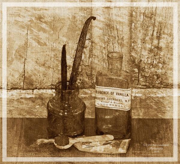 Vanilla Still Life by canoncarol