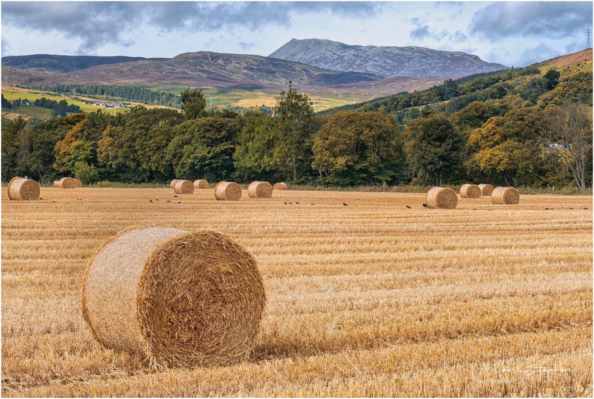 Rural Perthshire