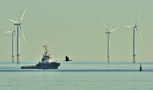 Pilot boat Hartlepool. by georgiepoolie