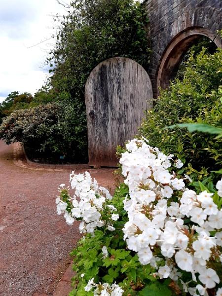 Secret door by carol01