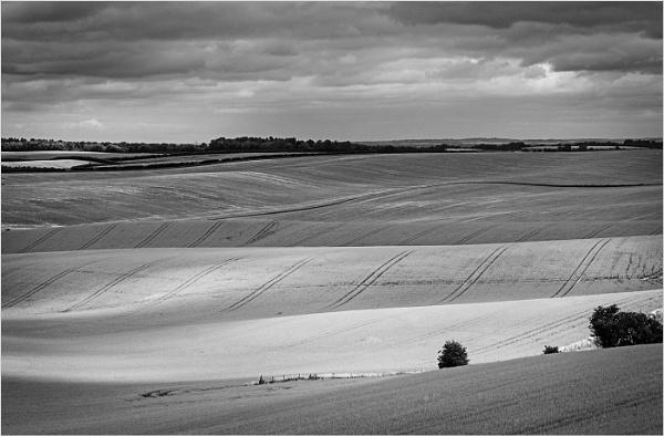 The Chiltern Hills by AlfieK