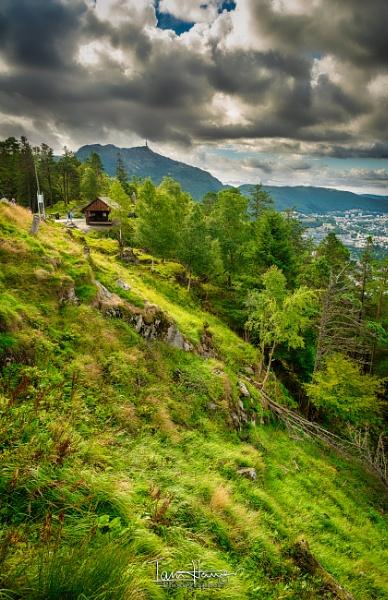 Fløyen Bergen by IainHamer