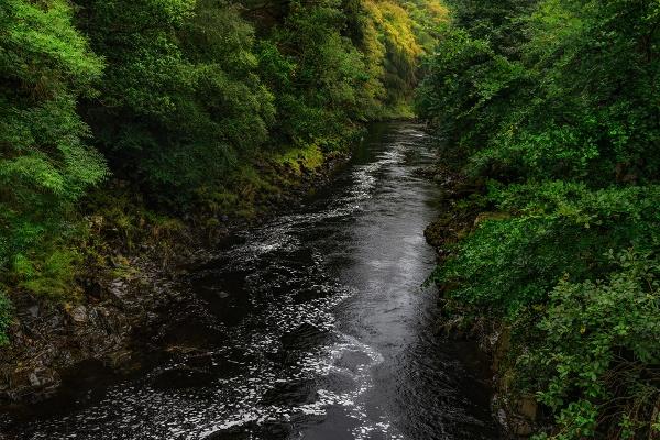 Silent river by Muggeridge