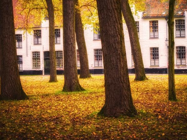 Autumn scene by Alfie_P
