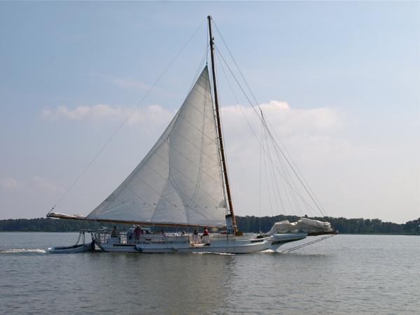 Skipjack by handlerstudio