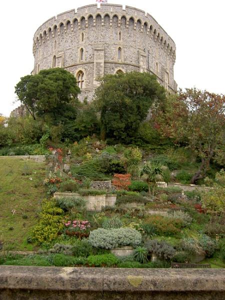 Windsor Castle by carol01