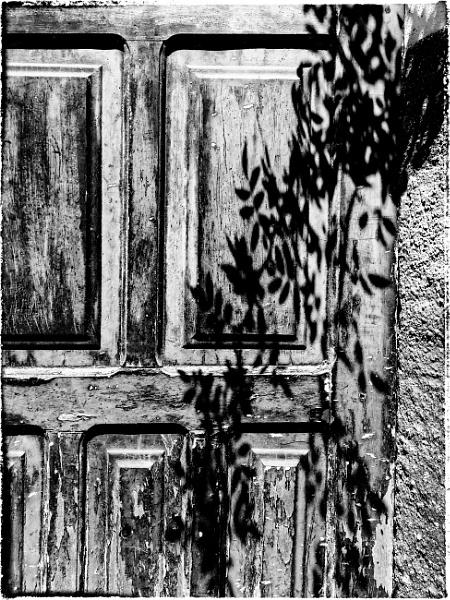 shadow door by jacomes