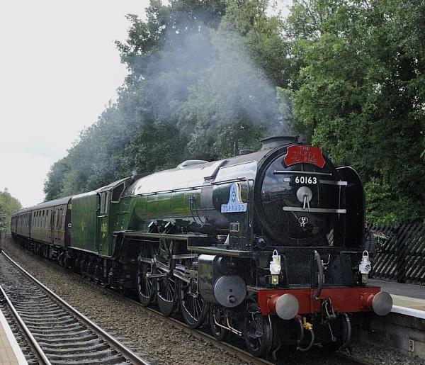Steam Train Tornado by robertsnikon