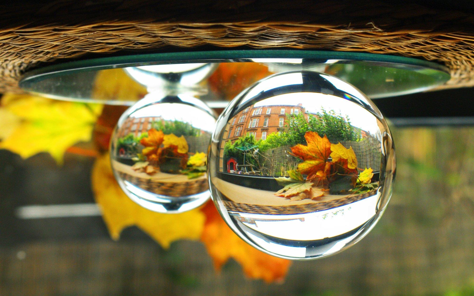 Autumn through a lens