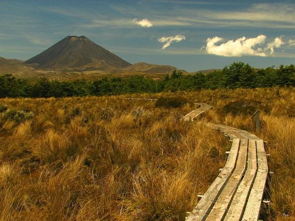 Mt Ngauruhoe 14 by DevilsAdvocate
