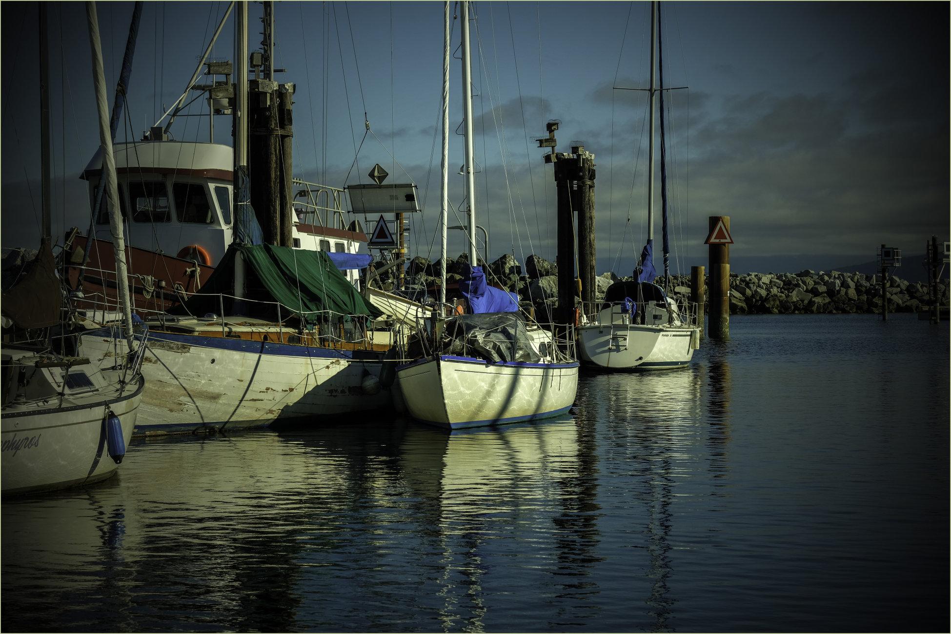 Fish or Sail Colour