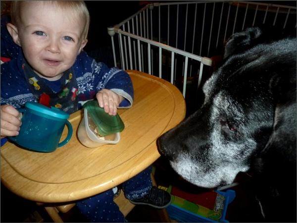 Balu and my Grandson by JuBarney