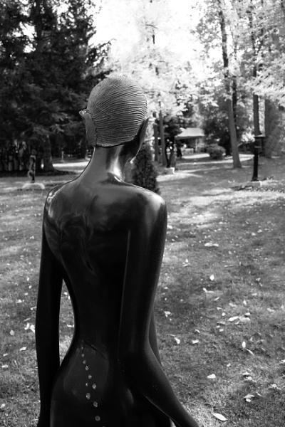 Looking ahead by banehawi