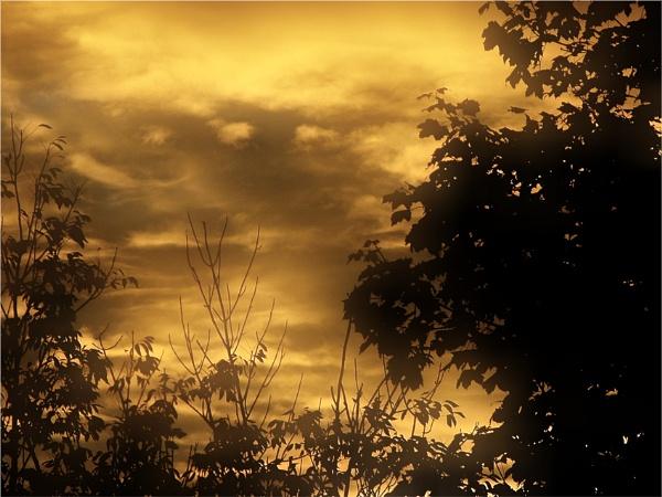 sunrise by carmenfuchs