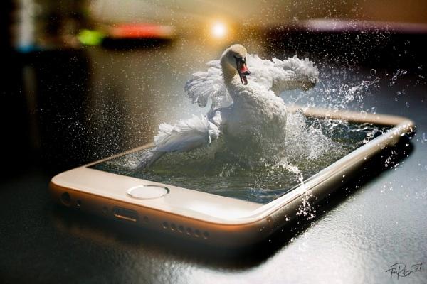 Splash Screen by tomriley