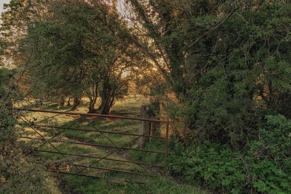 Rusty gate by BillRookery