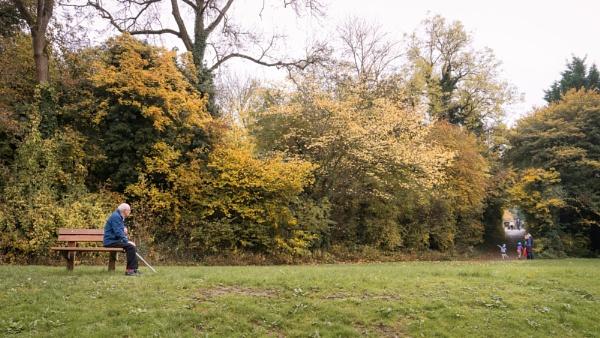 Fall | Distance by Silverlake