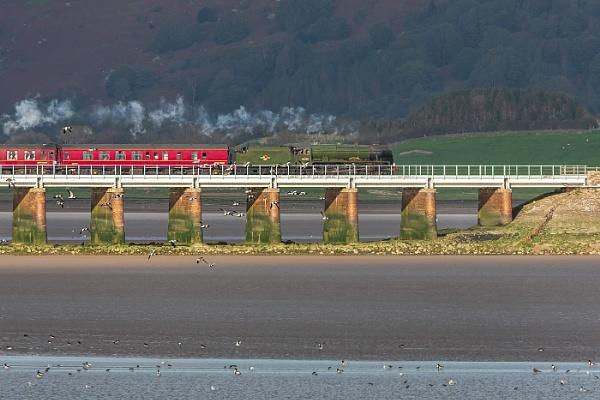 Scots guardsman on plumpton viaduct Saturday by STUARTHILL758