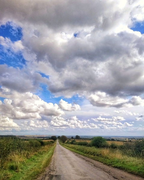 The road less travelled. by Tramper
