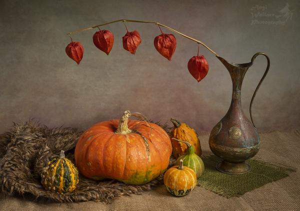 Pumpkin still life by Angi_Wallace