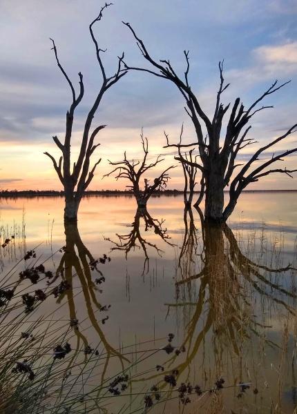 Lake Boney by robst