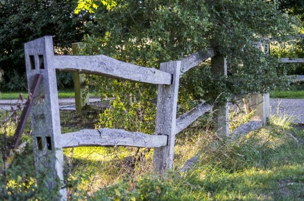 rustic fence by beetlejuice