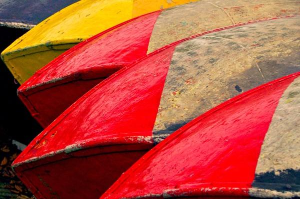 Boatabilia from Finsbury Park. by Chinga